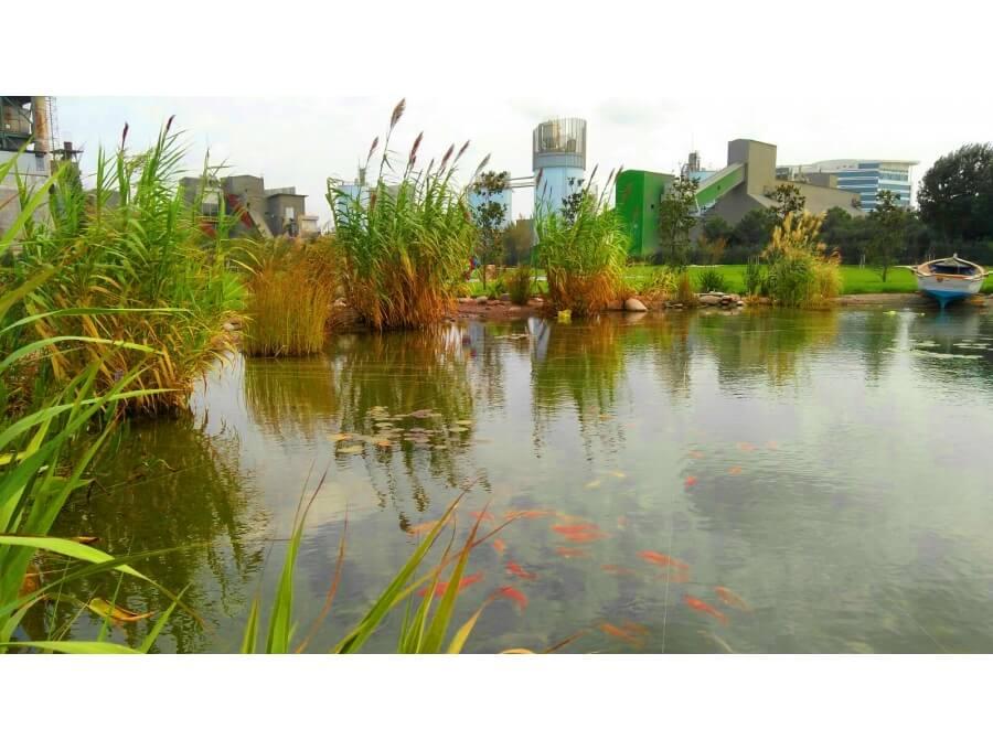 Aquacalix Peyzaj Biyolojik gölet havuz kurulumları, tasarımsal behçe düzenlemeleri, Yapay Şelale tasarım ve kurulumları, Süs havuzu yapımı ve kurulumu konus